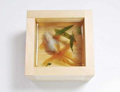 FESTETT 3D aranyhalak – Elképesztő!